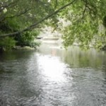river frome 2