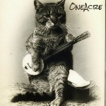 OneAcre Banjocat Logo