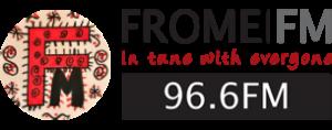 logo-millielight