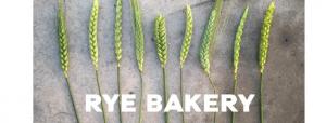 AAF rye bakery 17.03.2020